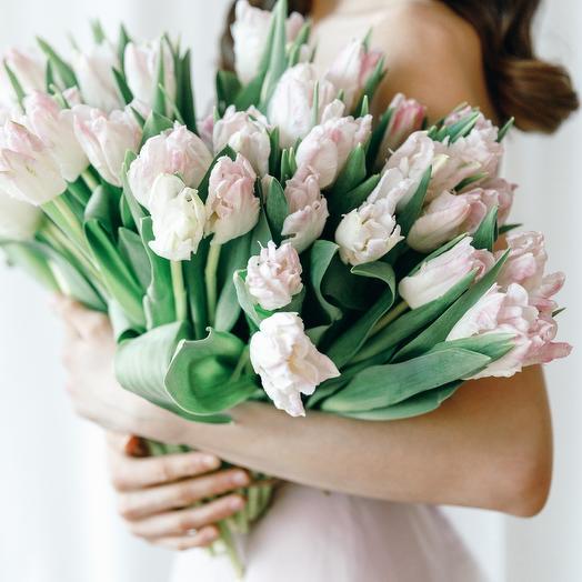 Тюльпан нежно-розовый Cabbana (51 шт)