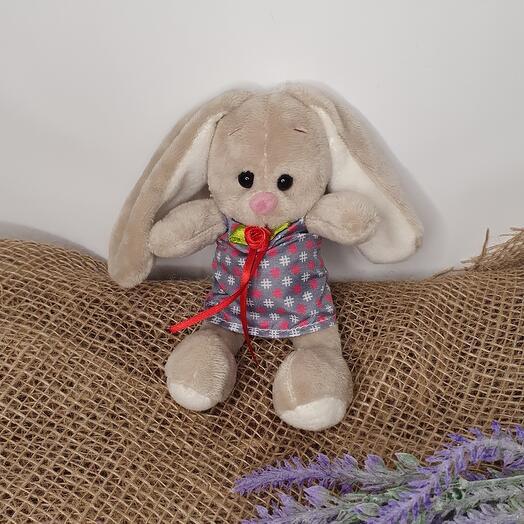 Bunny mini