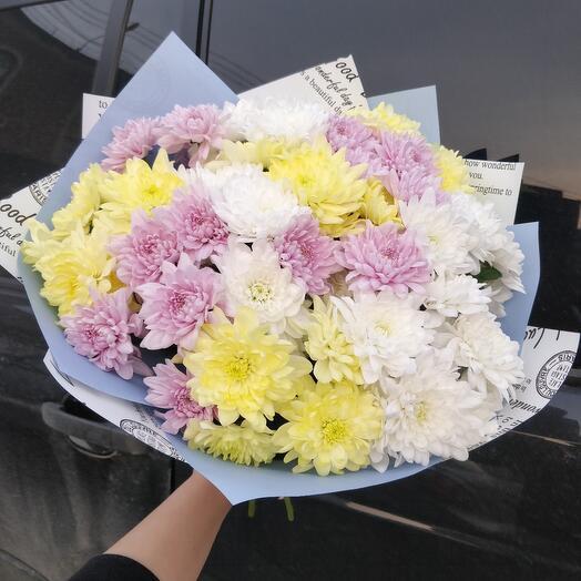 Пушистые хризантемы 9 веточек