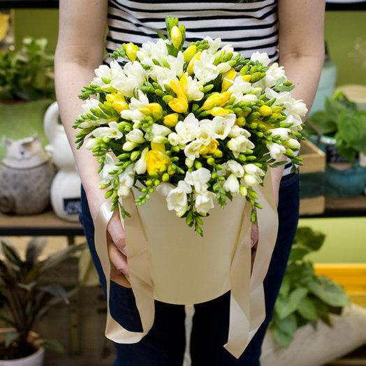 "Коробка с фрезиями ""Freesia"": букеты цветов на заказ Flowwow"