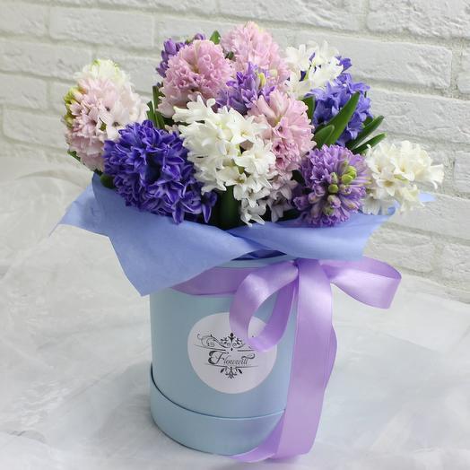 Гиацинты в шляпной коробке 2: букеты цветов на заказ Flowwow