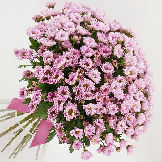 Охапка розовых ромашек