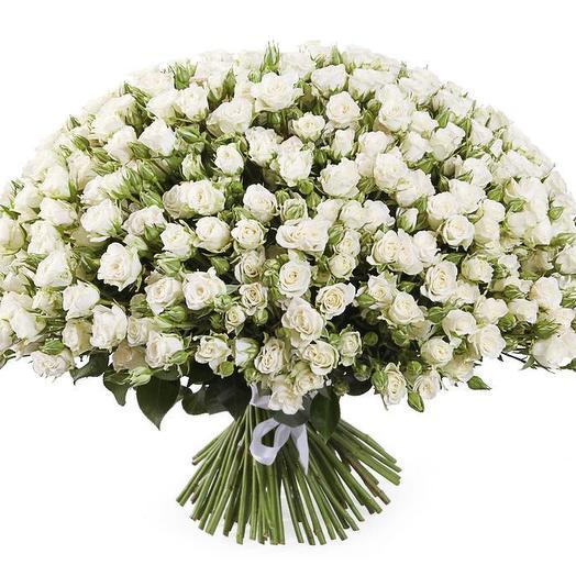 Кустовая роза 75 шт: букеты цветов на заказ Flowwow