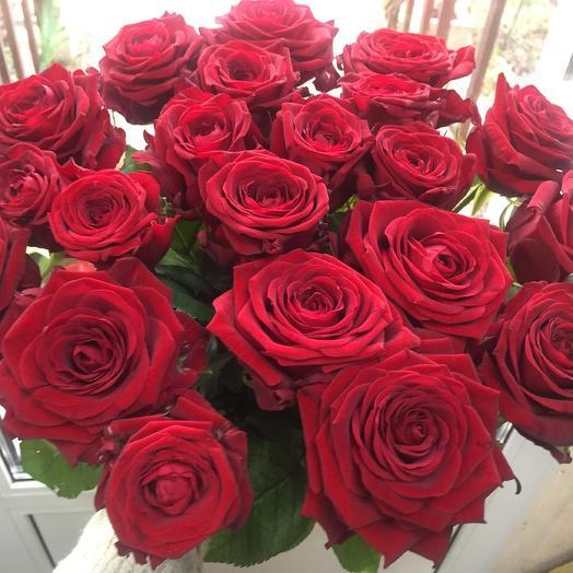 Букет бордовых роз 25 шт