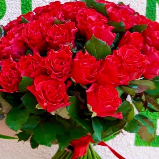 Роза Червона Ельторо