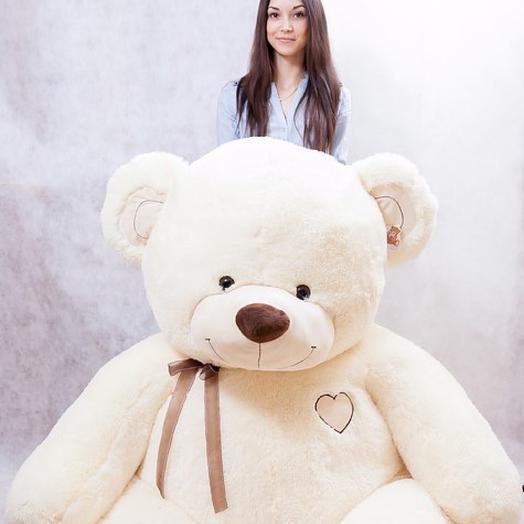 Медведь 230см