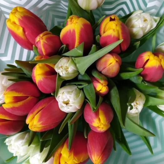 21 тюльпан микс Голландия