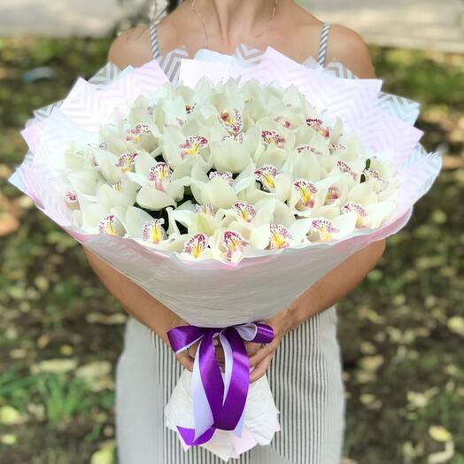 Шикарные орхидеи