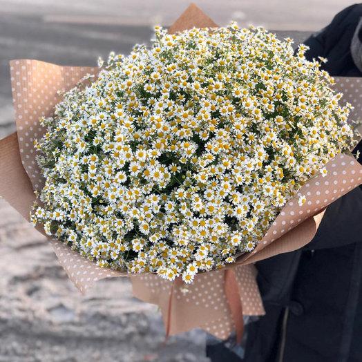 Каталог цветов по заказу через полевых, столицы доставка цветов