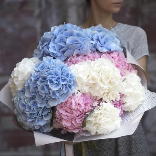 Гортензии охапка: букеты цветов на заказ Flowwow