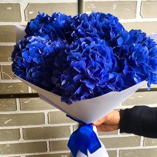 Синие гортензии