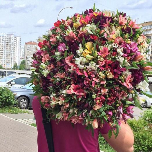 101 Альстромерия 🔥: букеты цветов на заказ Flowwow