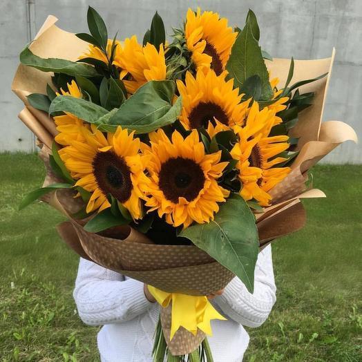 Подсолнухи 10 шт: букеты цветов на заказ Flowwow