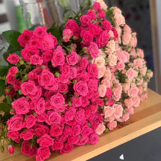 45 кустовая Роза