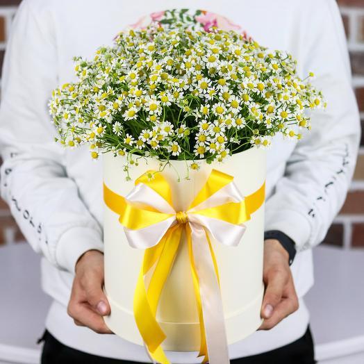 Коробки с цветами. Ромашки. N137