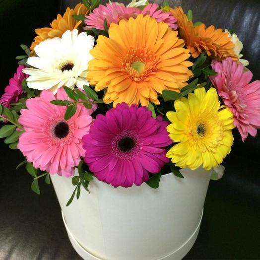 Цветы в коробке Гербера микс