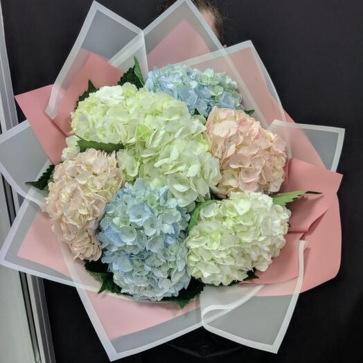 Giant bouquet of hydrangeas
