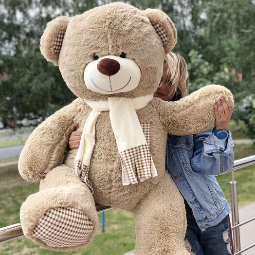 Мега Медведь 🐻