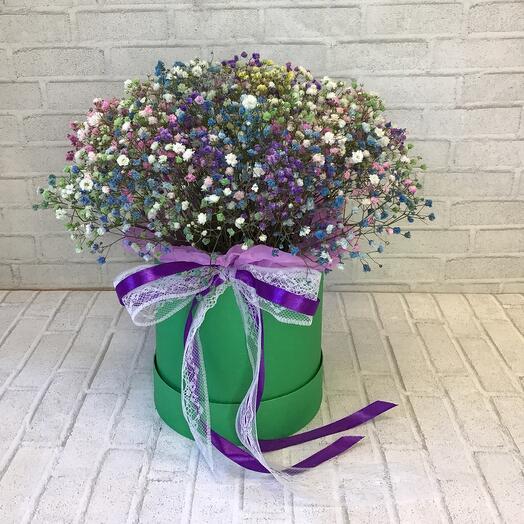 Цветы в коробке «Радужная гипсофила»