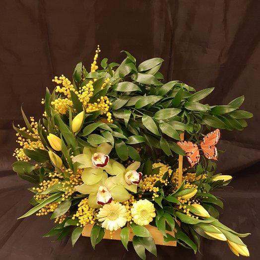 Орхидея с тюльпанами, герберами. в кашпо: букеты цветов на заказ Flowwow