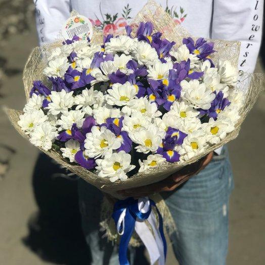 Монобукеты. Хризантемы Белая. Ирисы.   N235