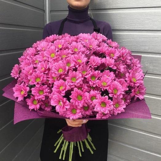 19 веток хризантем