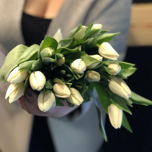 Молочные тюльпаны 19