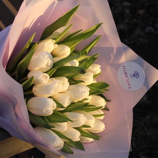25 белых сортовых тюльпанов