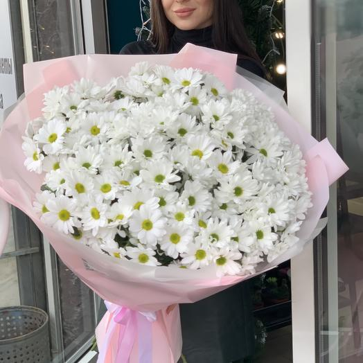Bouquet of giant daisies
