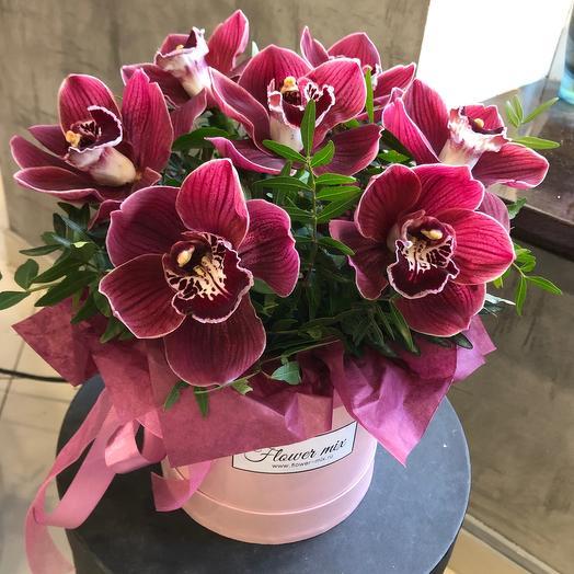Орхидеи Сказка