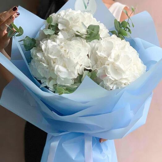 3 white hydrangeas with eucalyptus