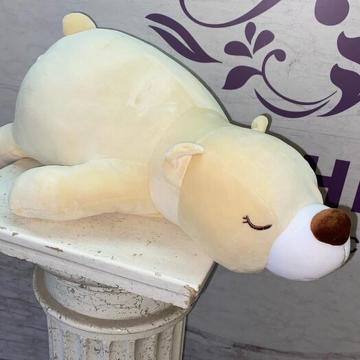 Медведь спящий