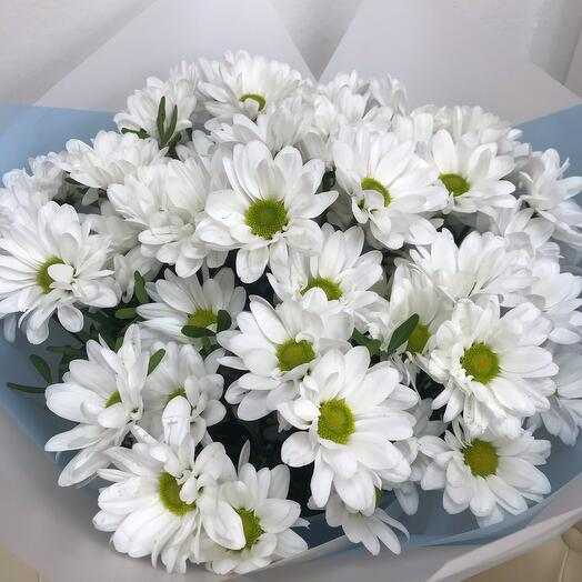 """""""Family happiness"""" 7 chrysanthemums"""