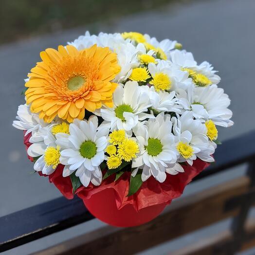 Цветы в коробке «Солнышко»