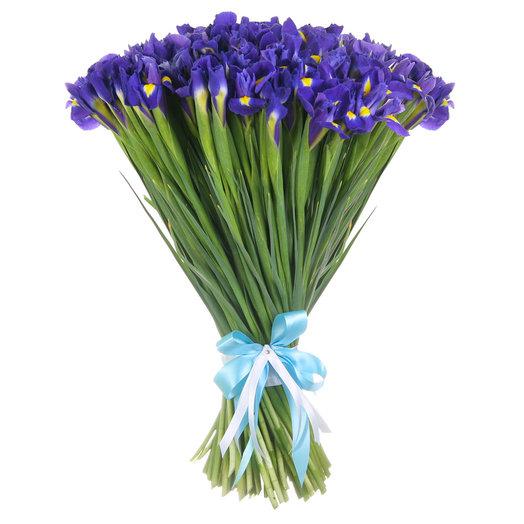 Букет из 101 ириса: букеты цветов на заказ Flowwow