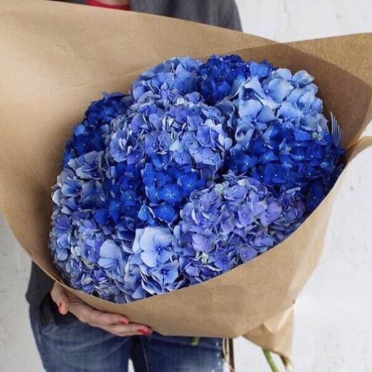 9 голубых гортензий: букеты цветов на заказ Flowwow