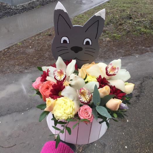 Кот: букеты цветов на заказ Flowwow