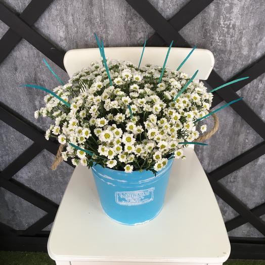 Небо в ромошках: букеты цветов на заказ Flowwow