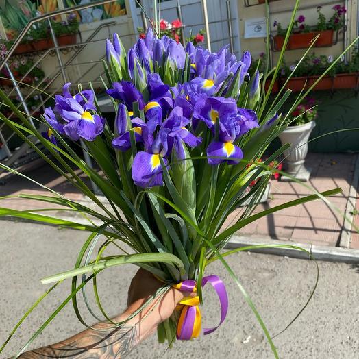 Bouquet of irises