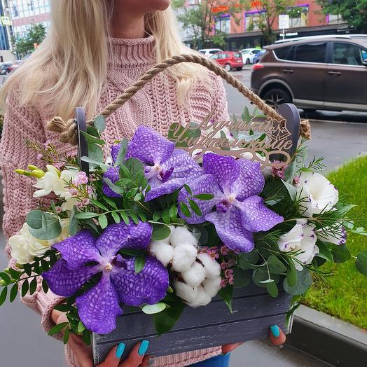Ящичек с орхидеей