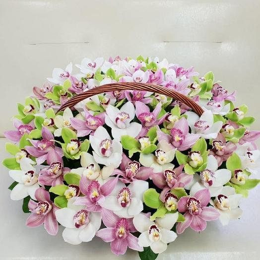 Корзина с орхидеей цимбидиум