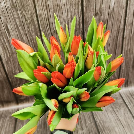 25 оранжевых тюльпанов
