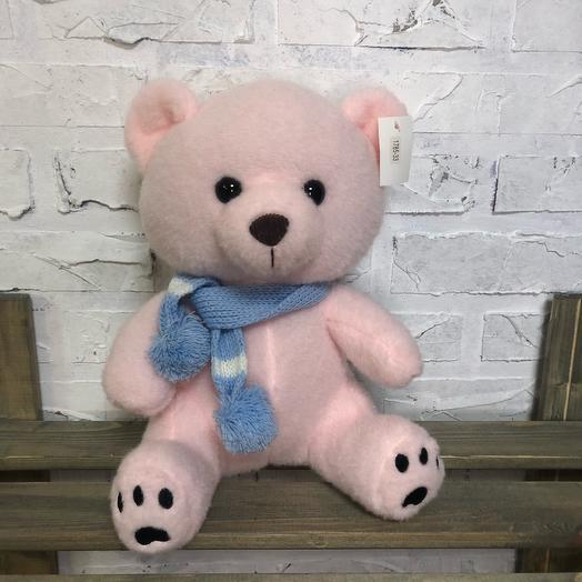 Teddy bear with a scarf