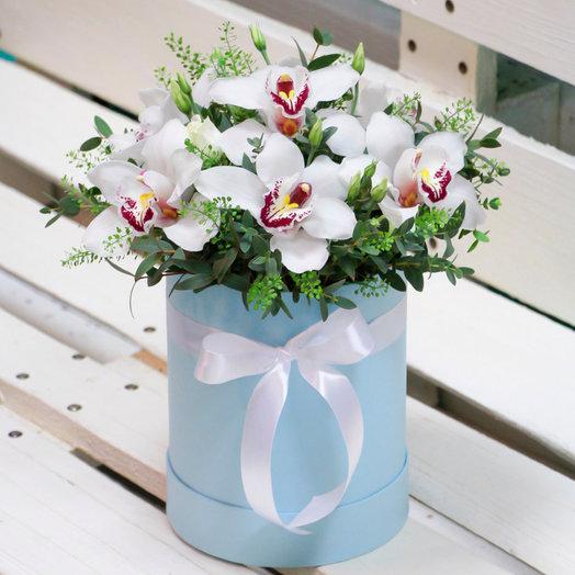 Шляпная коробка с белыми орхидеями: букеты цветов на заказ Flowwow