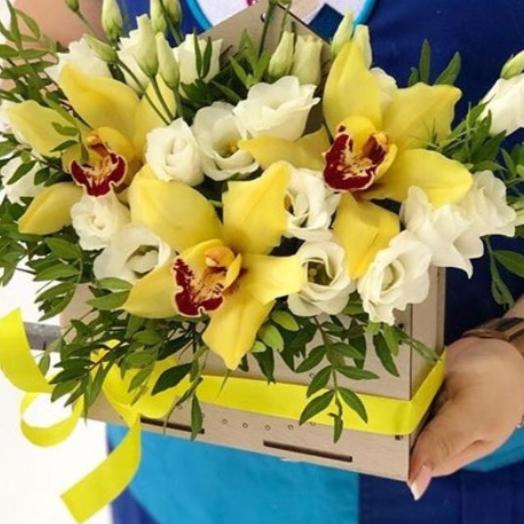 """"""" Татьянин день"""" бокс с 3 орхидеями: букеты цветов на заказ Flowwow"""