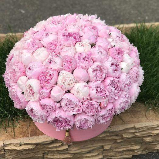 101 нежно-розовый пион в шляпной коробке: букеты цветов на заказ Flowwow