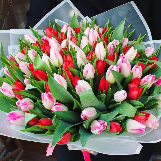 65 микс тюльпан