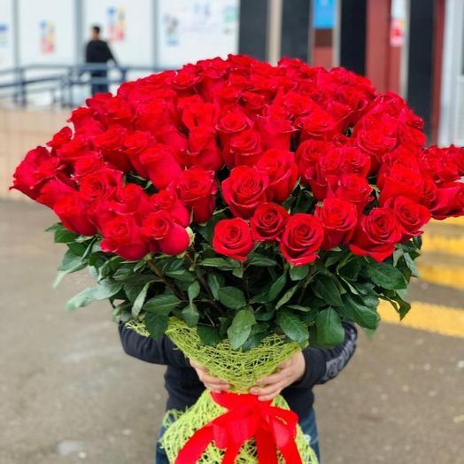 51 Роза Эквадорская