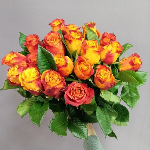 19 оранжевых роз