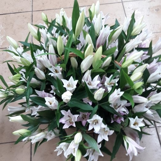 51 белая Лилия : букеты цветов на заказ Flowwow
